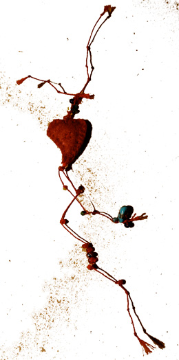 bandaged heart no 19