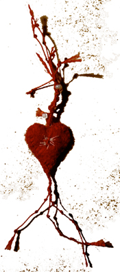 bandaged heart no 27