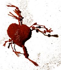 bandaged heart no32