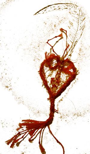 Ghost Heart 5