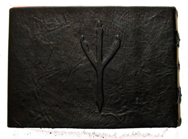 Crow book 2 (back) by Mo Orkiszewski