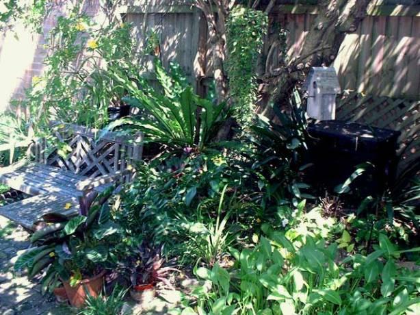 Maggie's magic garden