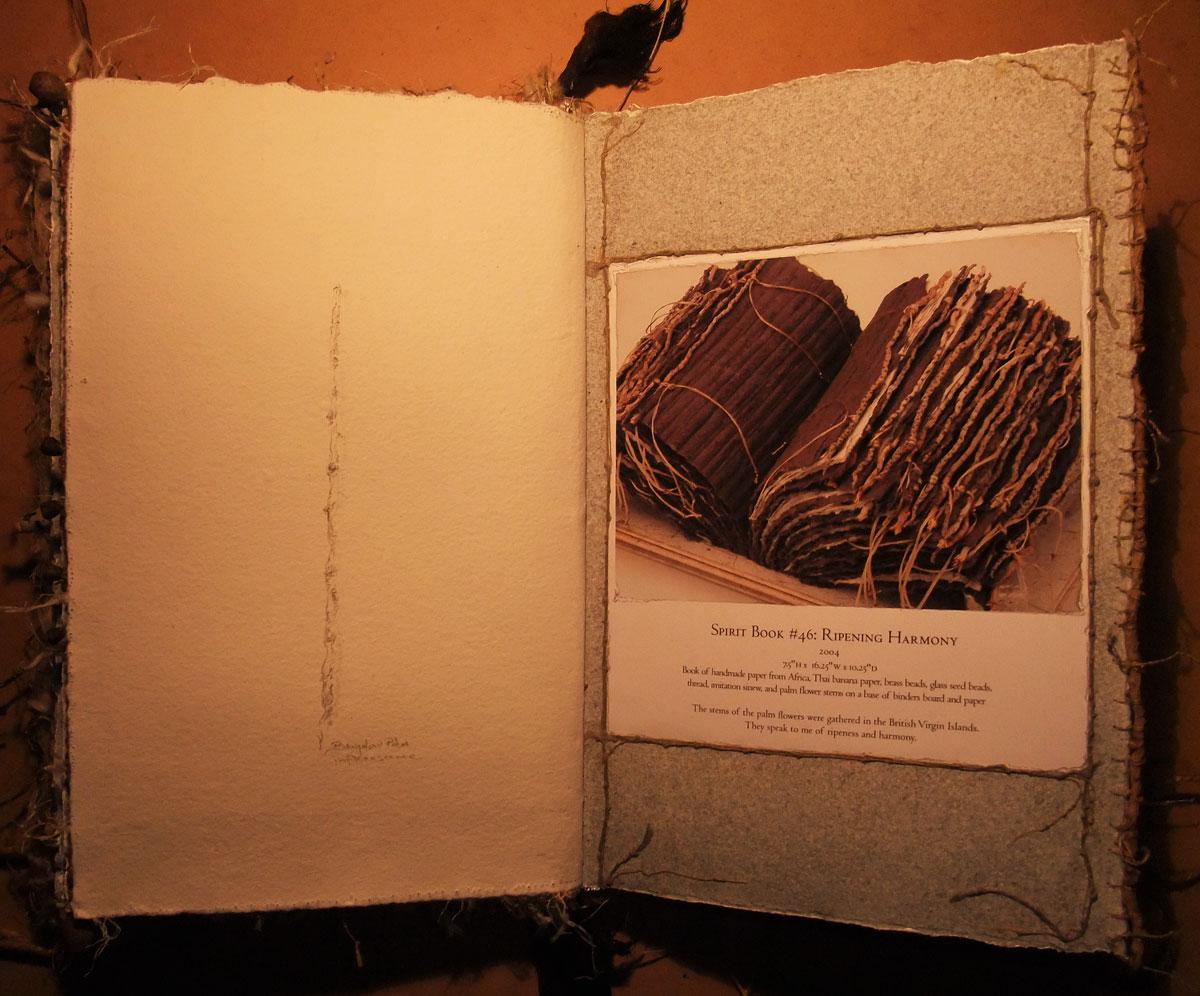 Spirit Book no 46