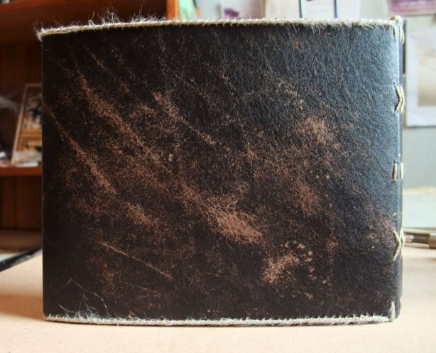 leather-and-lace-book-back