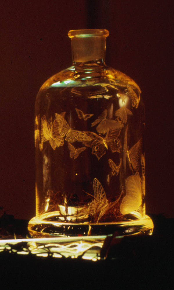 butterfly-decanter-by-Mo-Orkiszewski-1987