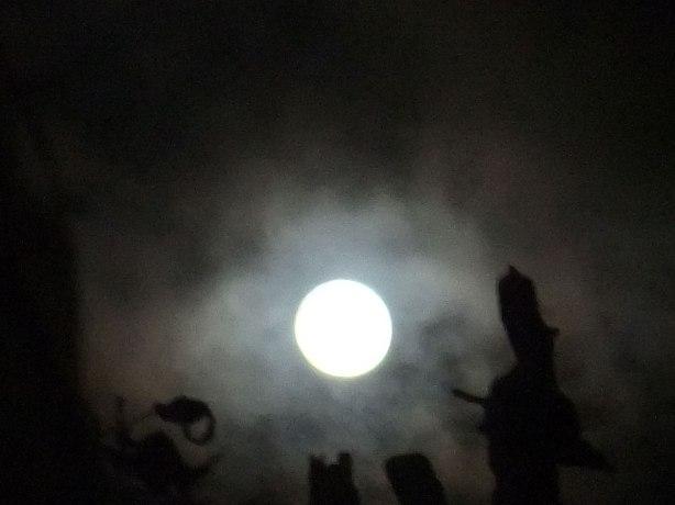 Full-Moon-in-Gemini