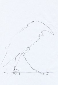 crow sketch-by-Mo-2012 web