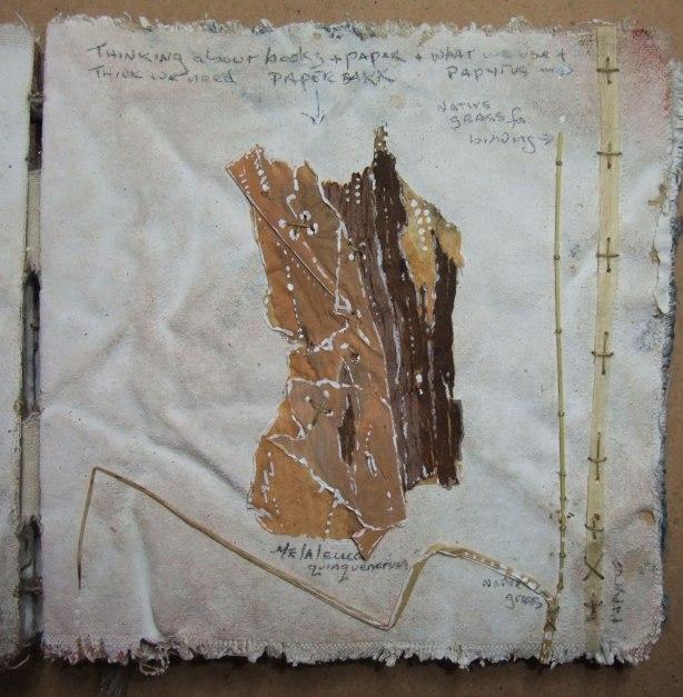 bark-grass-papyrus