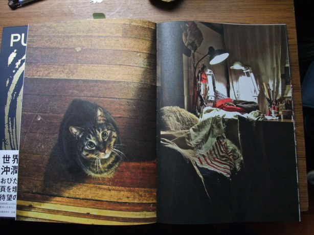 Cats-2013-Junko-Oki