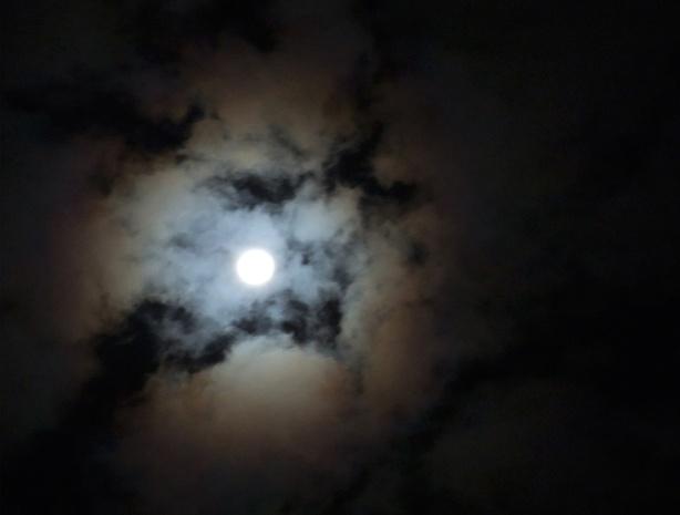 June-Moon
