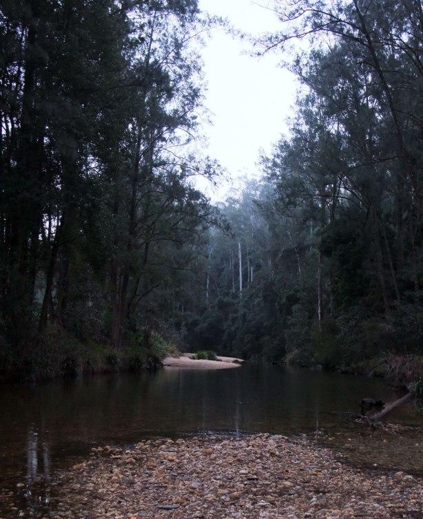 swimming-hole