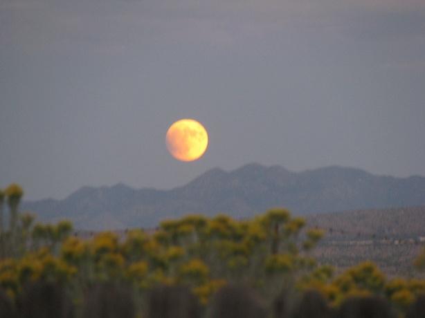 Blood-Moon-2-by-Marti-Weisbrich