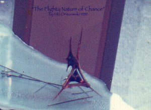 Flighty Nature of Chance Mo 1989
