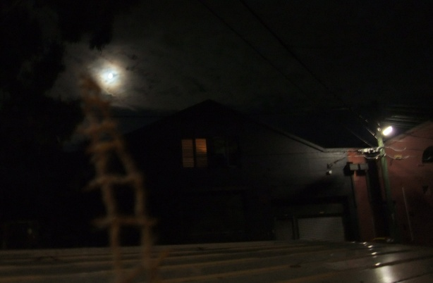 moondance-variation