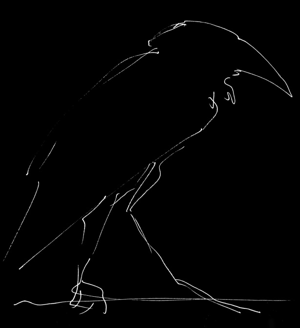 crow-sketch-mo-2012-T-shirt-invert-web