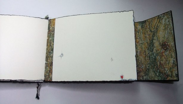 Crow-Book-VI-heart-detail2-Mo16
