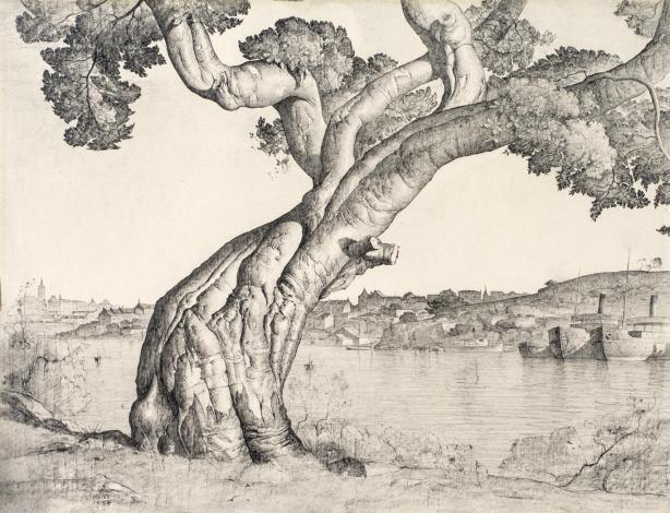 Lloyd Rees Port Jackson Fig 1934