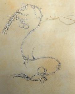 Lichen-on-parchment-Mo16