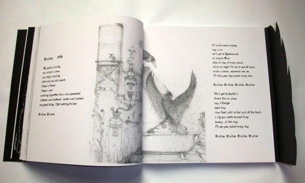 Crow-Book-Evaline