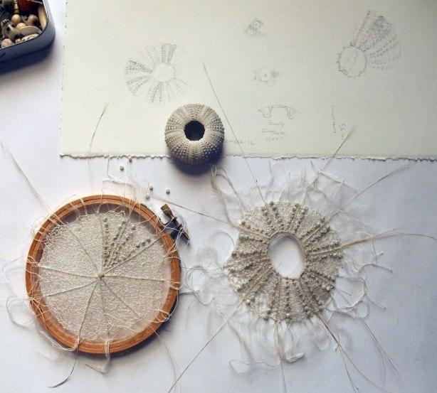 sea-urchin-ii-in-process-mo17
